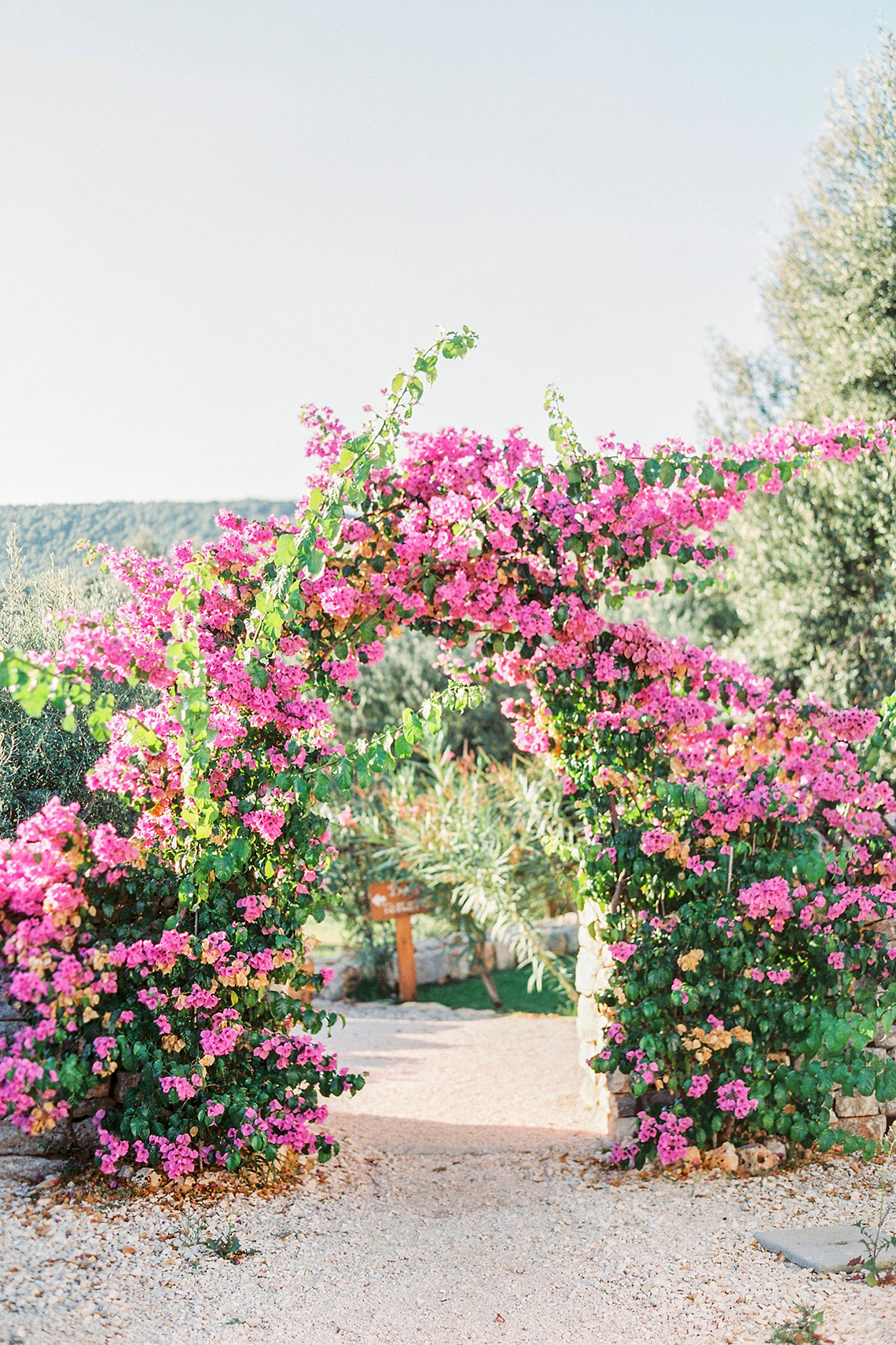 Elegant And Sophisticated Wedding In Jewel Tones In Paros Bougainvillea